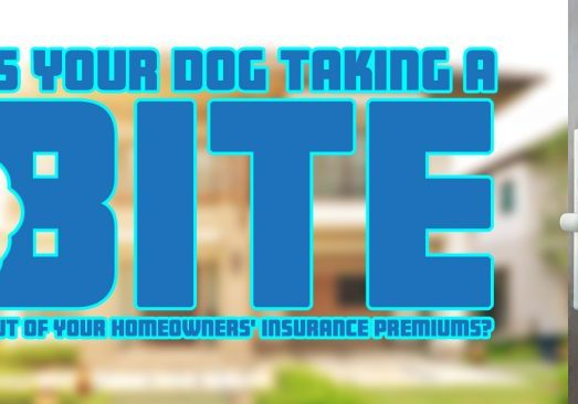 Is Your Dog Taking a Bite Out of Your Homeowners' Insurance Pr copy